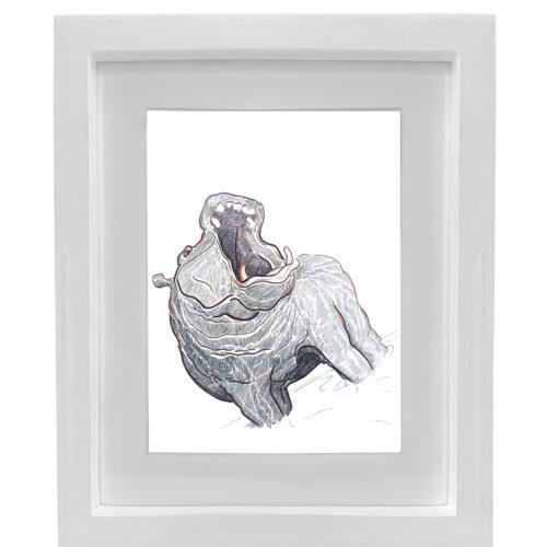 Hippopotamus-a2-white