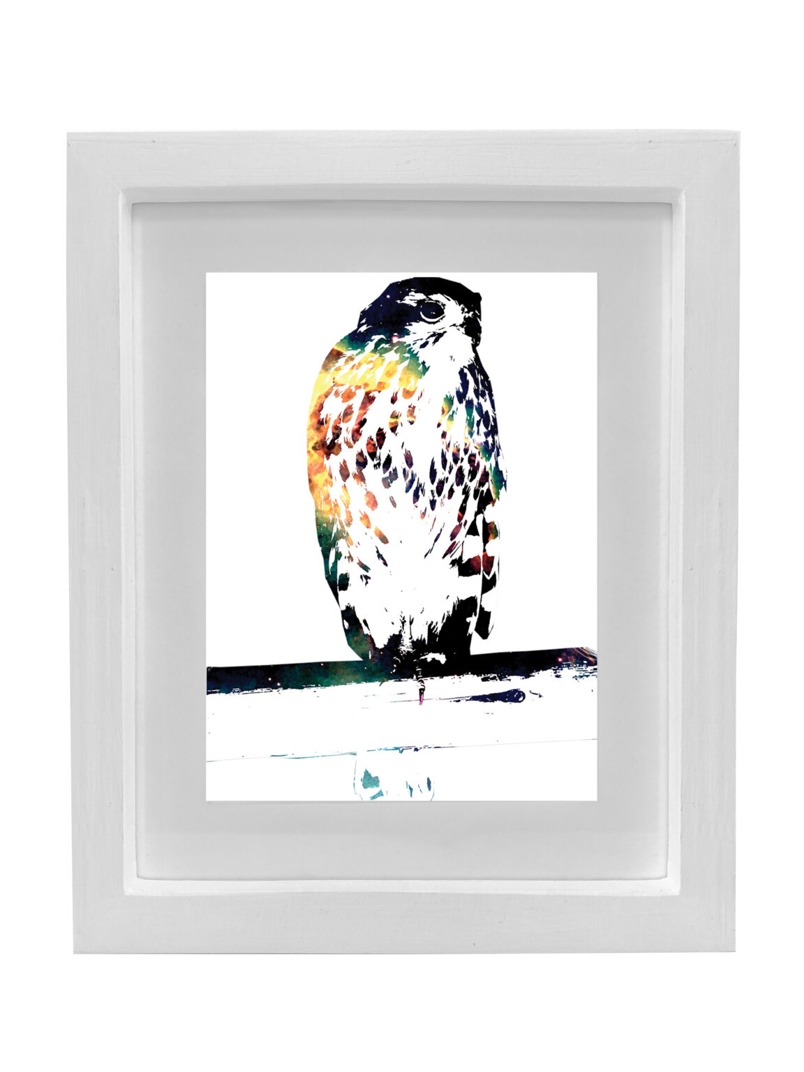 Watson_Bird Of Prey_A2_white